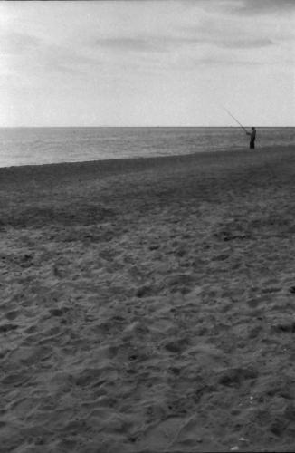 animalismo,mare,sabbia,cielo,pescatore,terracina,lido di enea