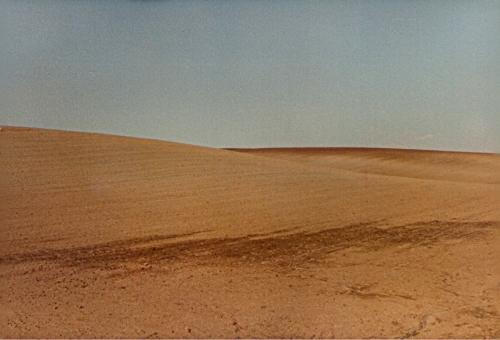 Desertificazione...no, Agro Romano in inverno - G.F.G. Liminare_206 (1981).jpg